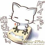 ダイエット 猫