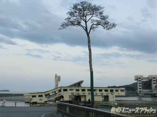 陸前高田 高田松原 奇跡の一本松 場所 地図 見学 行き方 位置 所在地 住所 アクセス