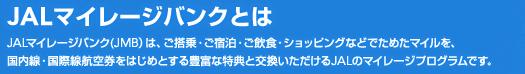 JAL 日本航空 日航 マイレージ 株主優待券 無効 無価値 使用期限