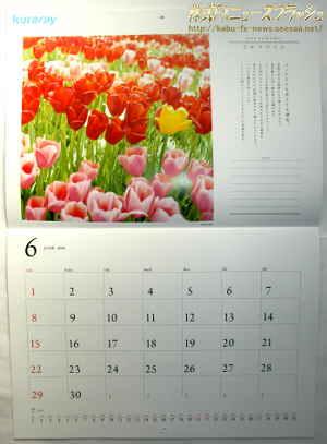クラレ 株主優待 2013年 平成25年 12月 2014年版カレンダー ひかりのうた