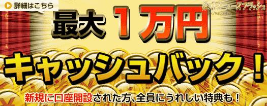 セントラル短資FX キャンペーン キャッシュバック1万円 FXチャート本 プレゼント(2011年3月31日(木)まで)