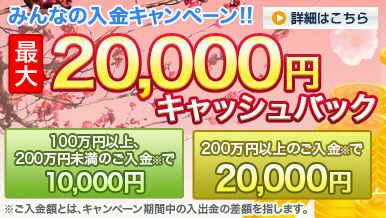 パンタ・レイ証券 みんなのFX みんなの入金キャンペーン 現金最大2万円(2009年3月31日(火)まで)