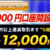 SBI FXトレード キャンペーン キャッシュバック 12000円(2013年1月31日(木)まで)